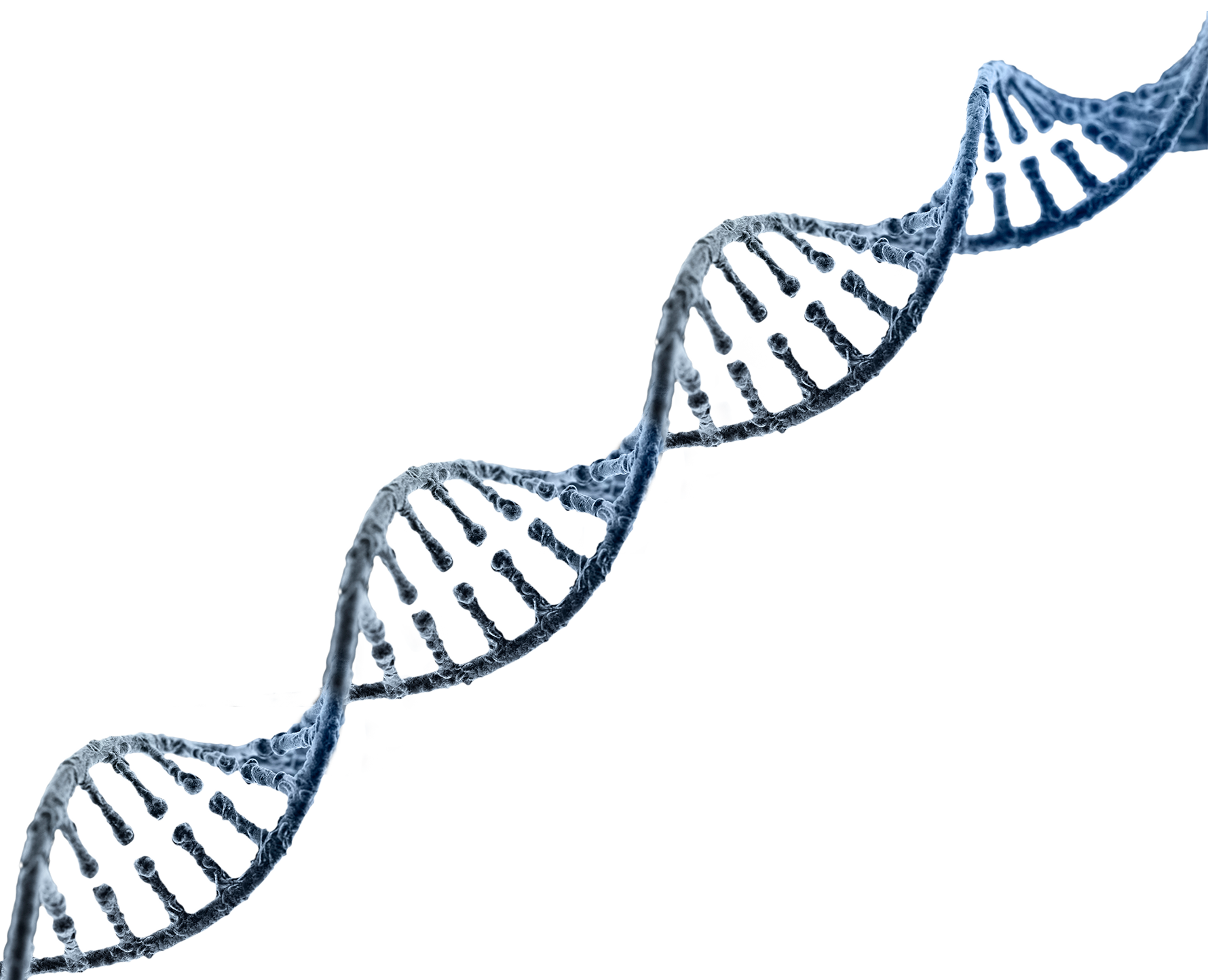 Background DNA Strand